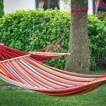 1709-lawendowo-mazury-wakacje-334